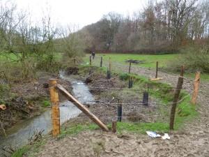 Mise en place de clôtures et plantations pour entretenir et reconstituer les ripisylves