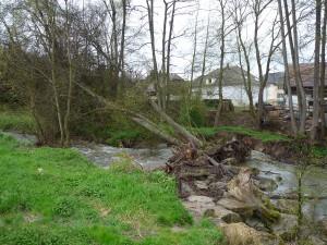 Seuil contourné à Seppois le Bas, la rivière ne passe plus sur les roches au premier plan