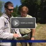image vidéo FR 3 Alsace aout 2013