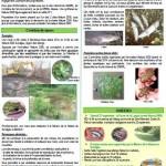 image newsletter n°2