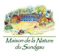 Logo MNS
