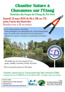 chantier CSA SMARL chavannes 2016.03.12