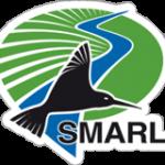 new logo smarl
