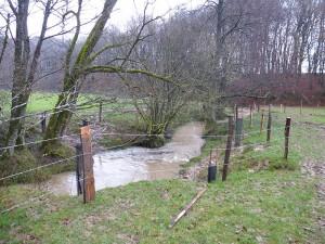 Mise en place de clôture et plantations