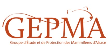 logo GEPMA
